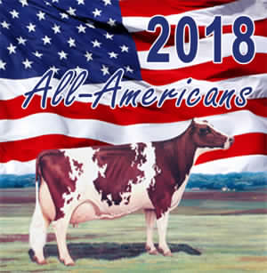 All-American Ayrshire Contest 2018